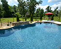 Freeform Pool With Waterfall | Central Arkansas
