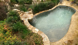 Custom natural pool